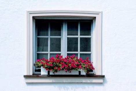 window-2651303_960_720