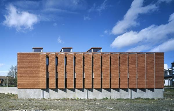 Instituto urbano de Irlanda